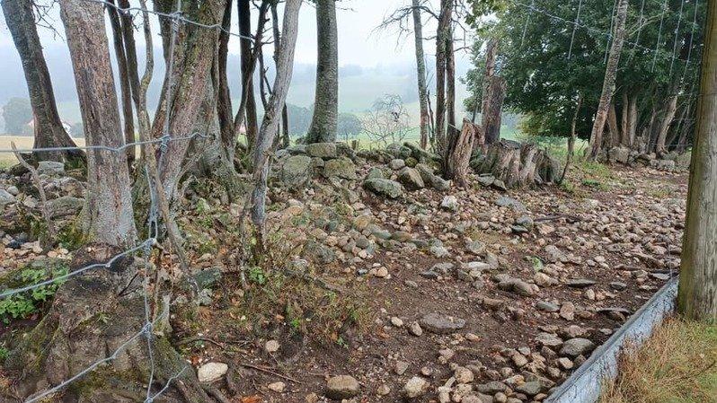 Enges: un enclos à cerfs vandalisé par jalousie?