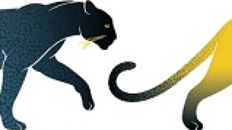 Atelier vacances-Lion, tigre, guépard et compagnie