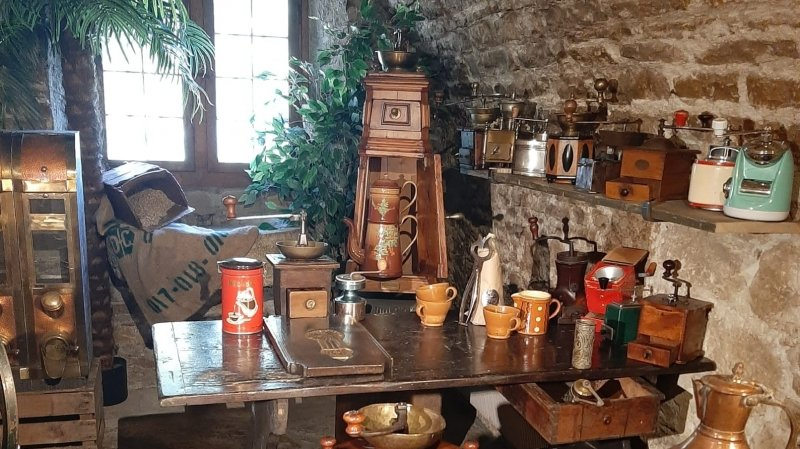 50 ans, 50 expositions, 50 collections
