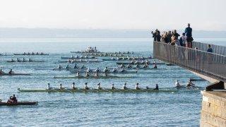 La Bilac a réuni 110 bateaux et 501 participants entre Neuchâtel et Bienne