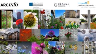 Fleurs du Patrimoine : votez parmi les 18 finalistes !