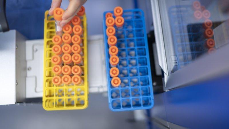 Coronavirus: la Suisse compte 1792 nouveaux cas, 8 décès et 18 hospitalisations en 24 heures