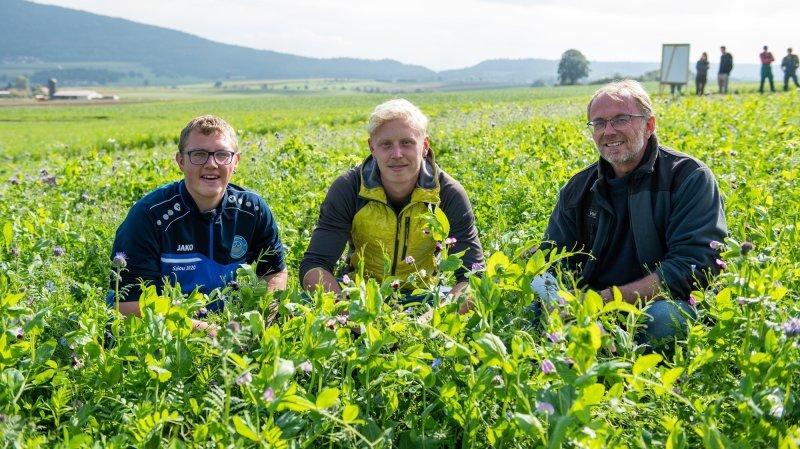 Des champs fleuris après la récolte, ça change tout pour le CO2
