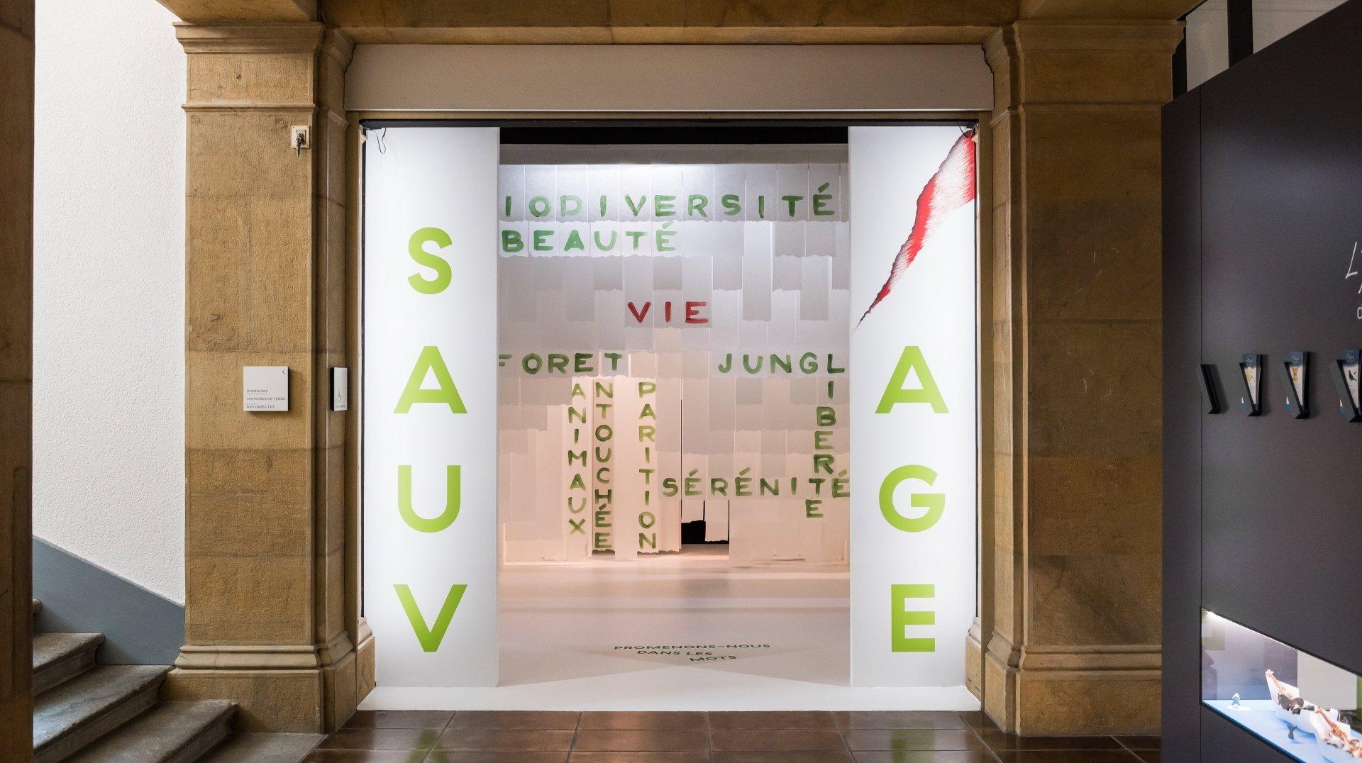 Neuchâtel: trois projections au Muséum d'histoire naturelle