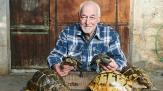 Bevaix: «Monsieur tortues» passe (lentement) la main