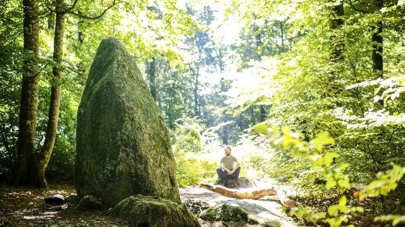Mystères de bois et de pierres à la Béroche