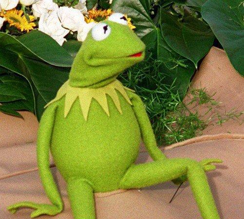 New York déroule le tapis rouge pour Kermit la Grenouille