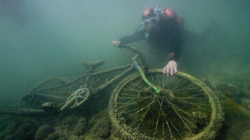 Sous l'eau et sur terre, opération nettoyage des rives