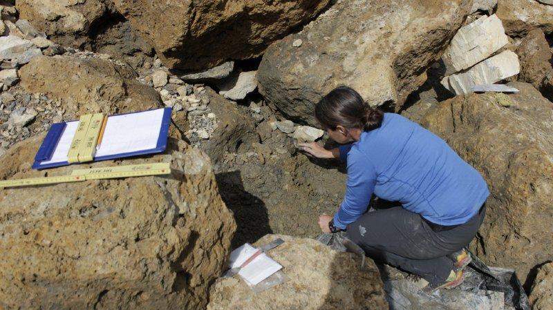 Cette découverte confirme que le col du Lötschberg était un passage permanent entre le Valais et l'Oberland bernois emprunté par des chasseurs, des bergers et des marchands depuis au moins 4000 ans.