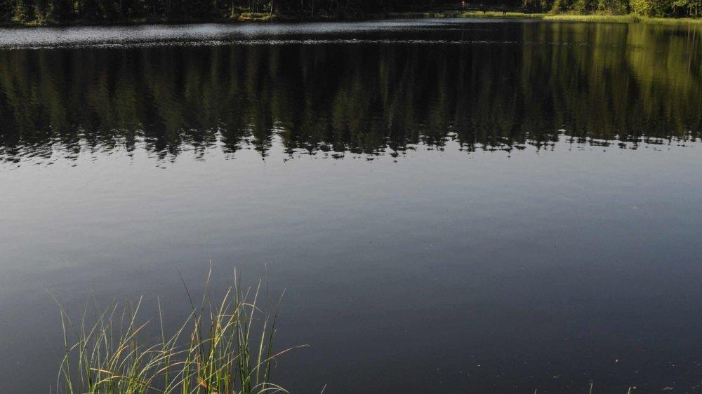 L'étang de Gruère dans une appli, c'est pour bientôt.