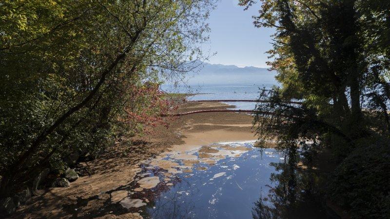 Vaud: grave pollution dans la rivière la Mèbre, le Léman contaminé