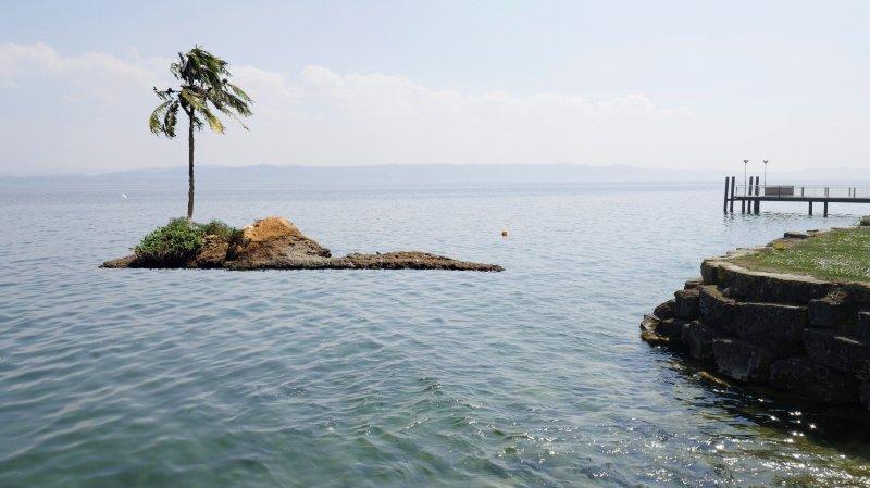 «Le palmier» sur une île flottante