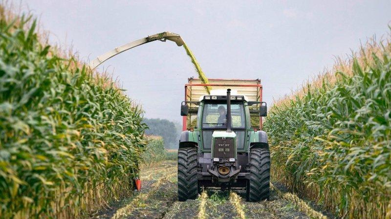 Agriculture: le Conseil fédéral ne veut pas interdire les pesticides de synthèse