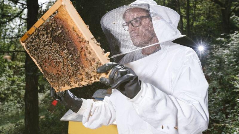 """Trois quarts des miels de la planète contiennent des pesticides: des Neuchâtelois le révèlent dans """"Science"""""""