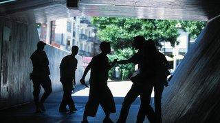Crimes et délits: l'incroyable série de l'agresseur du Faucon