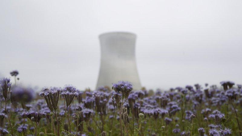 Les données relatives aux vapeurs rejetées par la cheminée de la centrale sont des documents officiels au sens de la loi fédérale sur le principe de transparence dans l'administration.