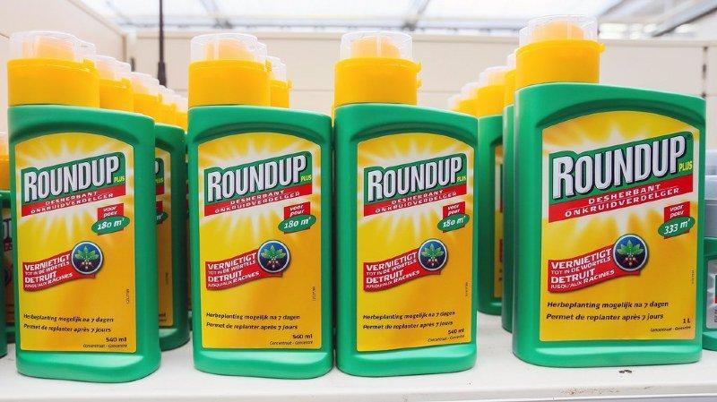 Herbicide: commandé en 2016, le rapport sur le glyphosate en Suisse n'a toujours pas été publié