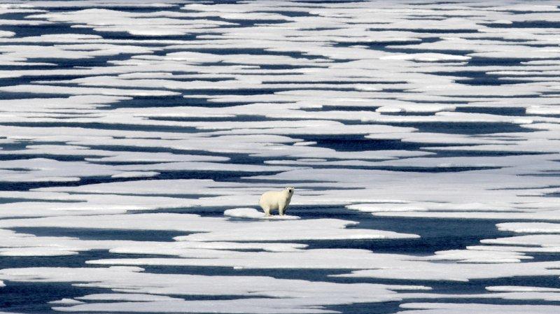 """Le réchauffement de l'Arctique et la fonte de la banquise sont la """"nouvelle norme"""""""