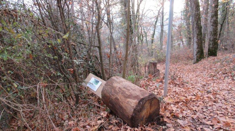 Vandalisme: la commune de Corcelles-Cormondrèche porte plainte