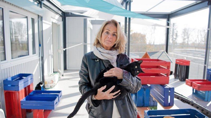 Les amis des animaux ont sauvé la SPA de Neuchâtel et environs