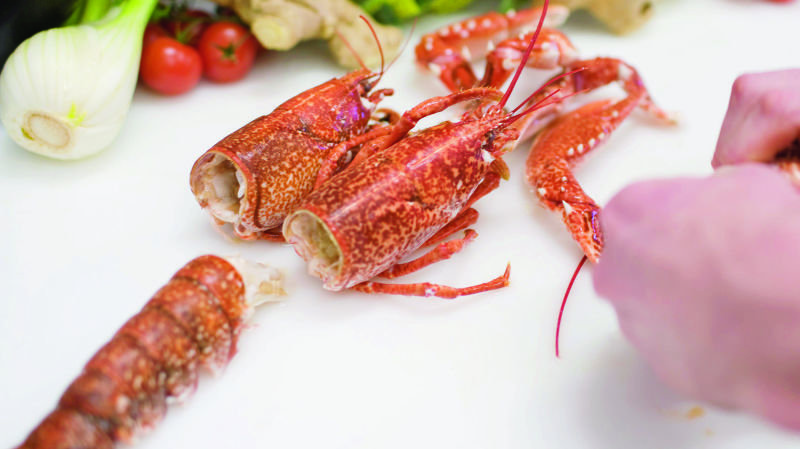 Les homards devront être étourdis avant d'être mis à mort. Les plonger vivants dans de l'eau bouillante ne sera plus autorisé.