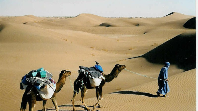 Trekking au sud du MAROC