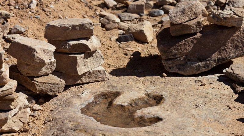 Australie: des vandales s'en prennent à une empreinte de dinosaure à coups de marteau