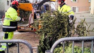 Vos sapins de Noël peuvent être recyclés