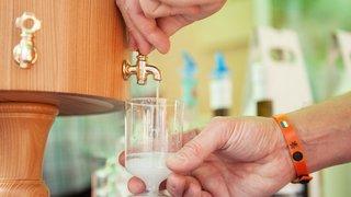 En juin, l'absinthe se montrera chez elle, dans les distilleries