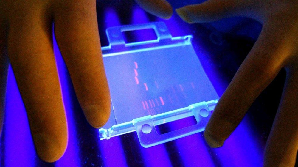 De nombreux médecins se sont lancés dans «la médecine du bien-être», en proposant des  analyses d'ADN en dehors du  domaine médical.