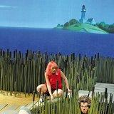 «Le Loup des sables» d'après Åsa Lind
