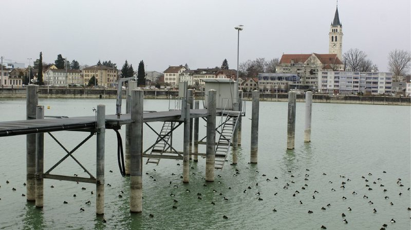 L'homme avait chuté dans le port de Romanshorn, dans le canton de Thurgovie (illustration).