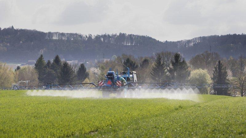 Agriculture: pétition visant les nouvelles techniques de modification génétique