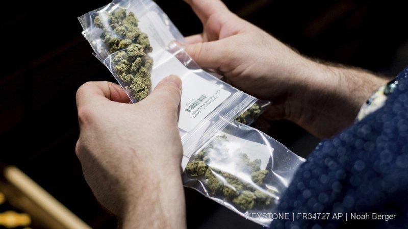 L'homme avait plusieurs sachets de marijuana sur lui lors de son interpellation (illustration).