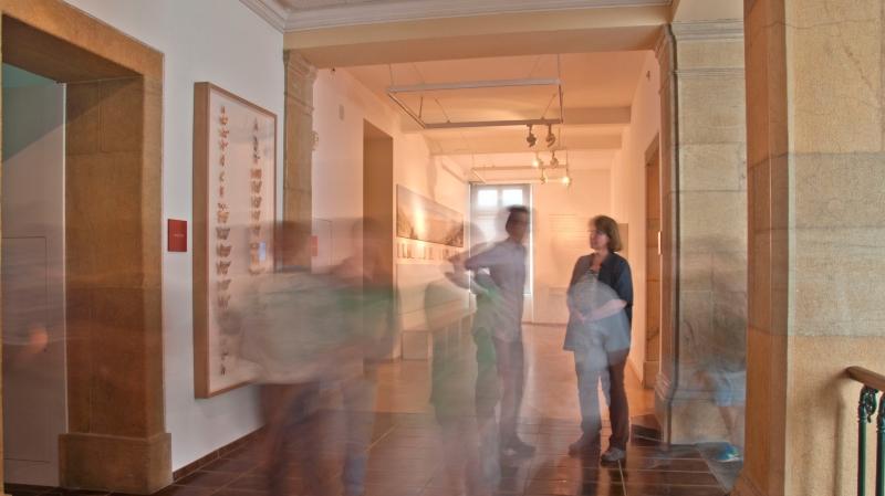 Un jeu de rôles se déploiera dans les salles du musée.
