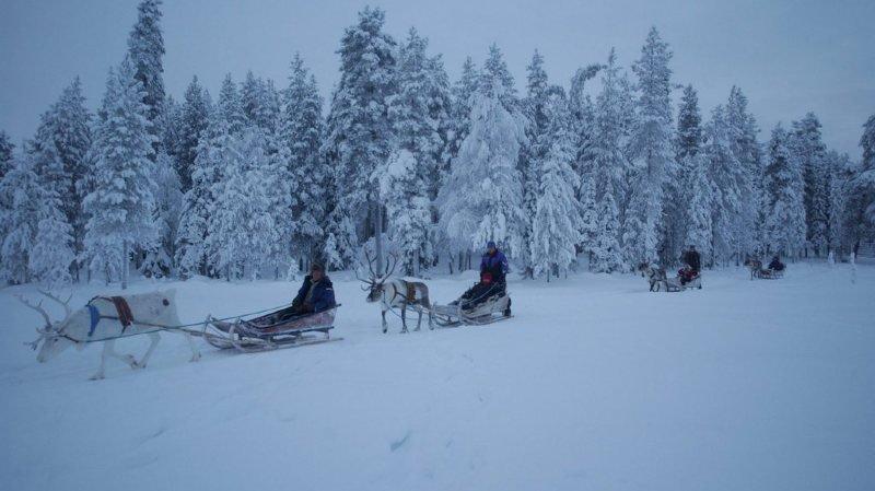 Bonheur: la Finlande pays le plus heureux du monde, aussi pour ses immigrés
