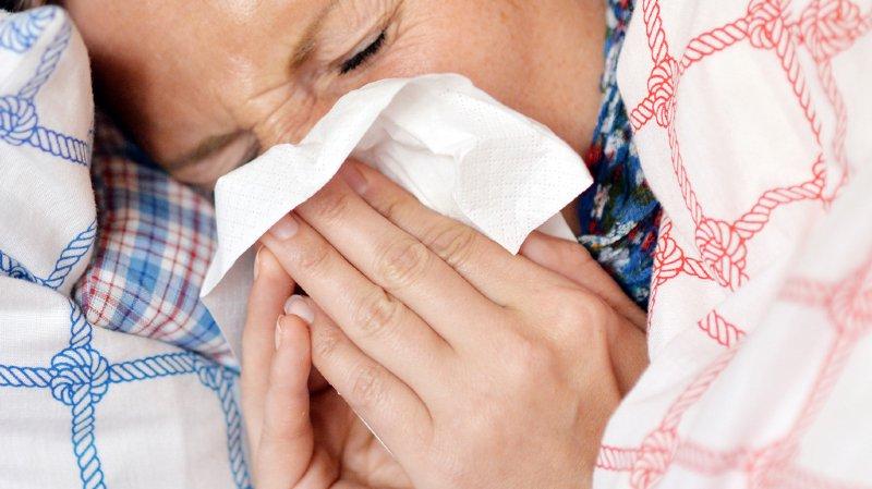 Santé: fin de l'épidémie de grippe
