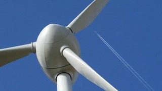 La cohabitation entre les chauves-souris et les éoliennes est possible, selon des chercheurs suisses