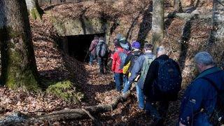 Les fortifications de la forêt du Jolimont attirent les visiteurs