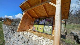 Neuchâtel: nouvelle exposition photographique au Jardin botanique