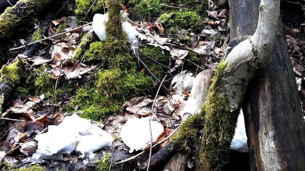 Une partie des langes usagés retrouvés par une promeneuse, non loin du hameau de Crostand.