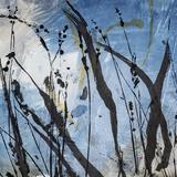 Exposition de Claire Pagni