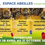 Espace Abeilles, rucher didactique et  vivant