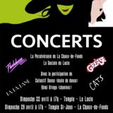 Concert sur le thème des comédies musicales