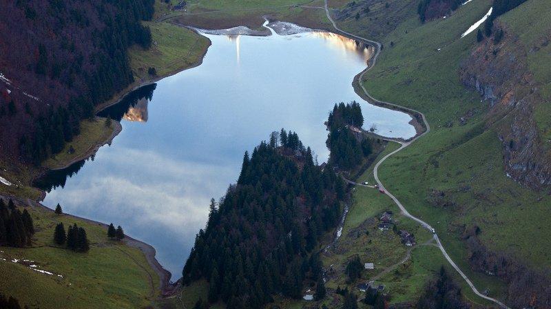 Des poissons carnivores dévorent toutes les réserves d'un lac d'Appenzell