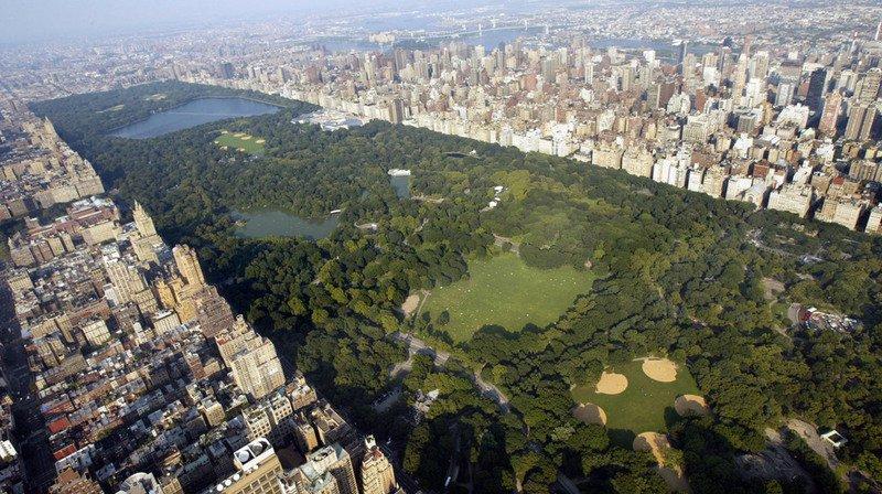 Plus de 42 millions de personnes se rendent chaque année à Central Park, qui s'étend sur plus de 325 hectares au coeur de New York.