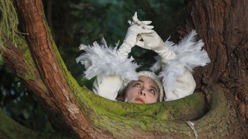 Un merle blanc chantera dans le parc  du château de Cormondrèche