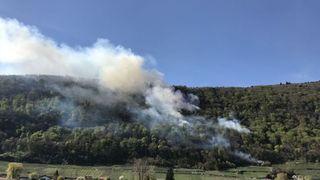 Un feu de branchage à l'origine du feu de forêt de La Neuveville