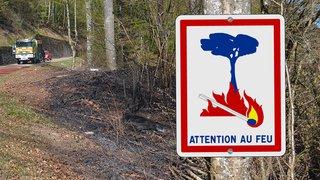 Un temps sec inhabituel mais pas surprenant à l'origine des feux dans les forêts neuchâteloises