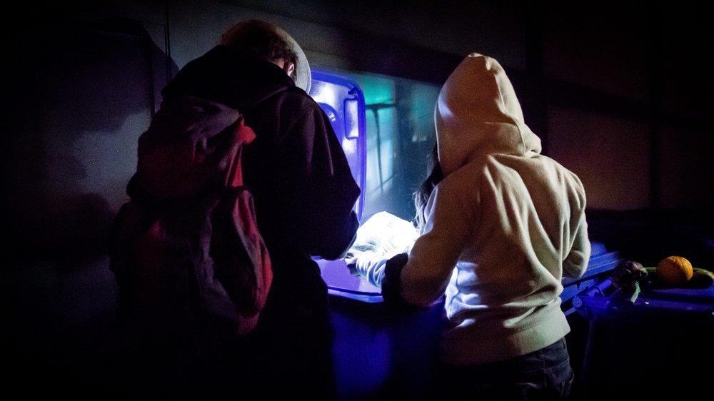 Alexandre et Camille vont régulièrement faire le plein de leurs frigos dans les containers d'un grand distributeur du Littoral.